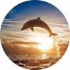 Делфин Калъф За Резервна Гума С Ваш Размер 15  16 17 Цола С Код КМ 320